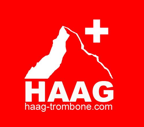 HAAG_pagine_internet_valencia
